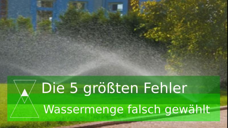 3. Fehler: Falsche Wassermege