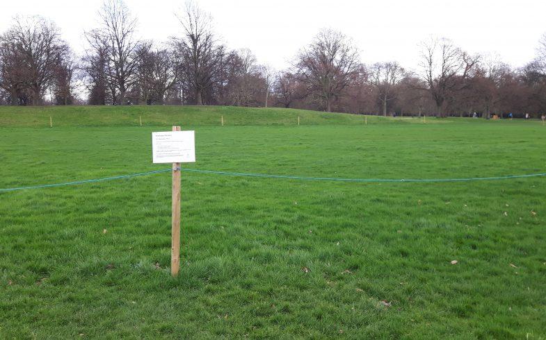Wie sie im Frühjahr in 7 Arbeitsschritten den Rasen für ein sattes Grün vorbereiten, Bilder London Hyde Park!